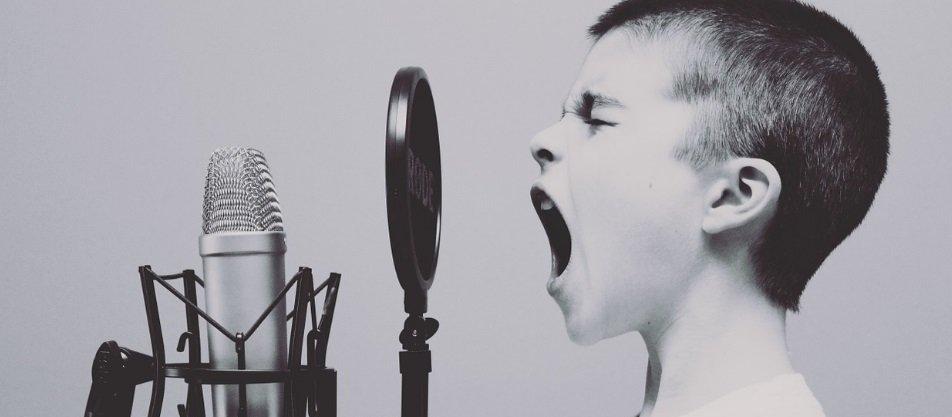 Professeur de chant - Coach vocal